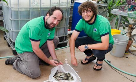 Image of aquaculture and sustainability in Muhlenberg's New Science building